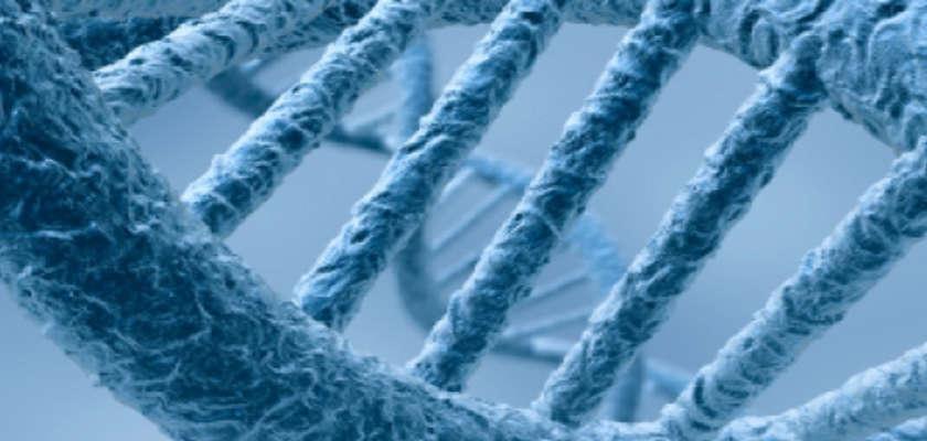 Le fichage ADN aura son débat public