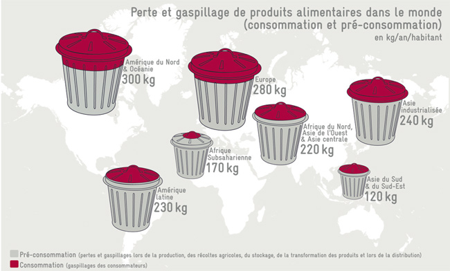 Illustration - Gaspillage alimentaire, l'ampleur du scandale