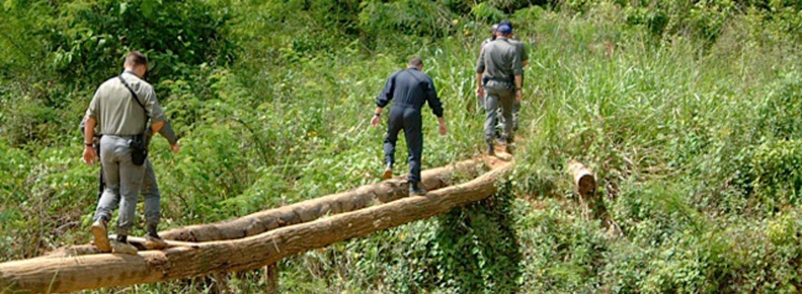 La guerre sans fin des chercheurs d'or clandestins en Guyane