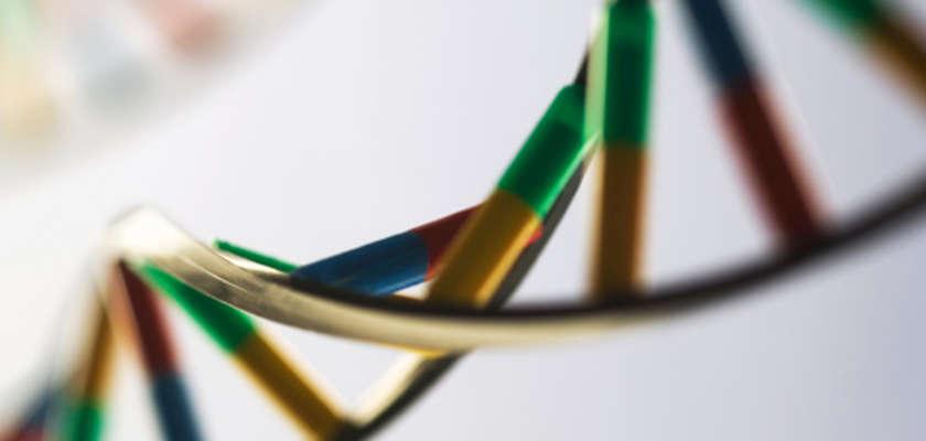 Le fichier aux deux millions d'empreintes génétiques sur la sellette