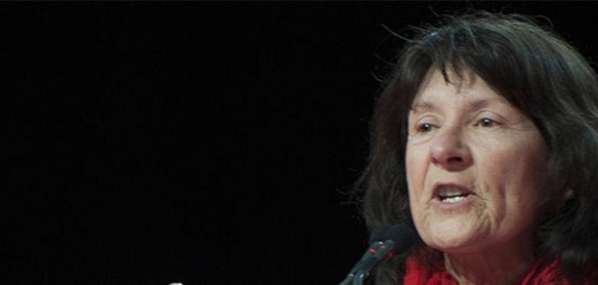 NDDL : Le conseil général se débarrasse d'une élue hostile à l'aéroport