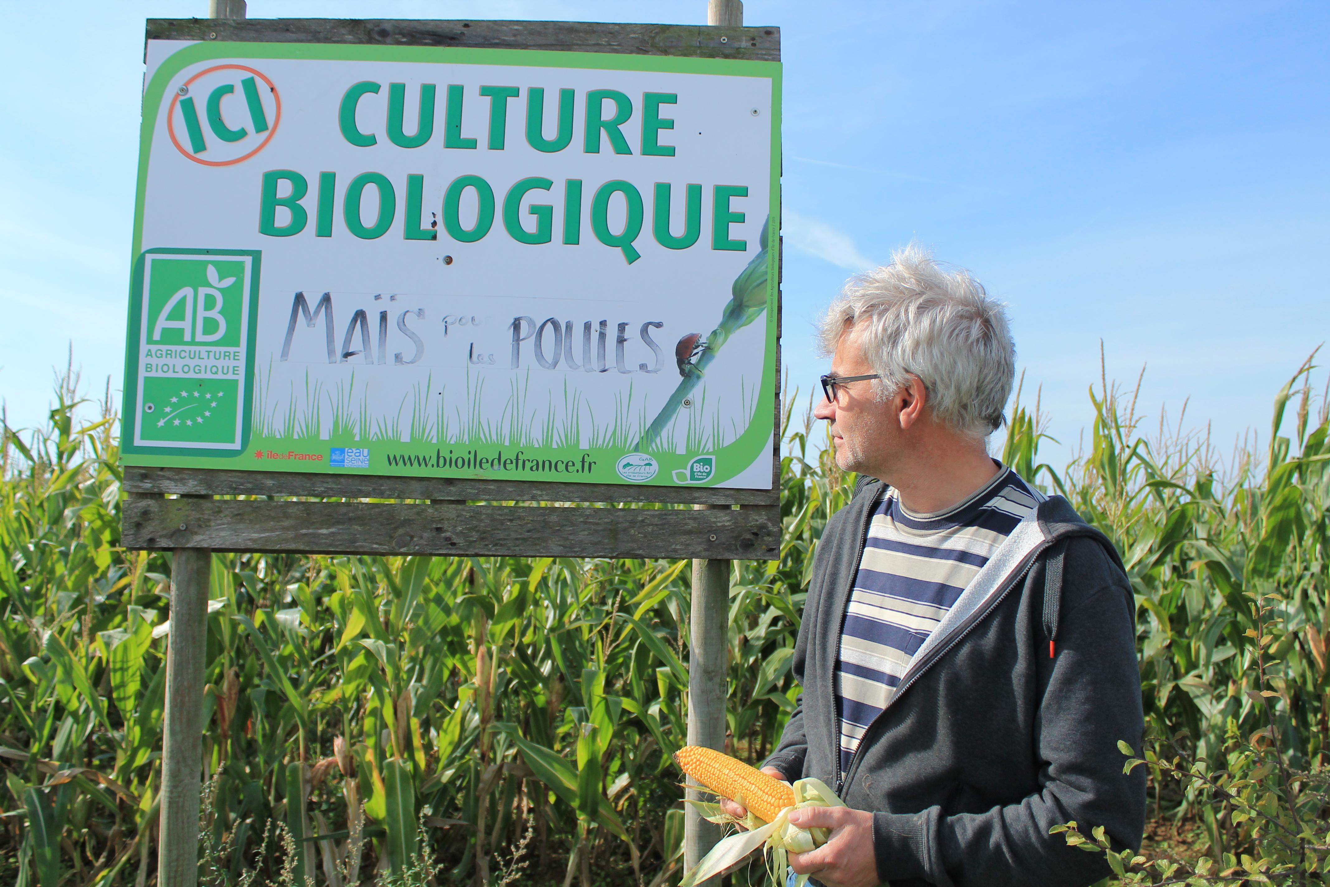 Illustration - Bio : « Nous sommes la mauvaise conscience de l'agriculture conventionnelle » - Sasha Mitchell