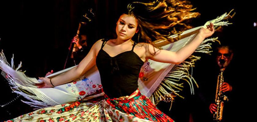 Cirque Romanès : une zone libre à partager