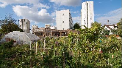 L'AgroCité: un espace de bien-vivre menacé