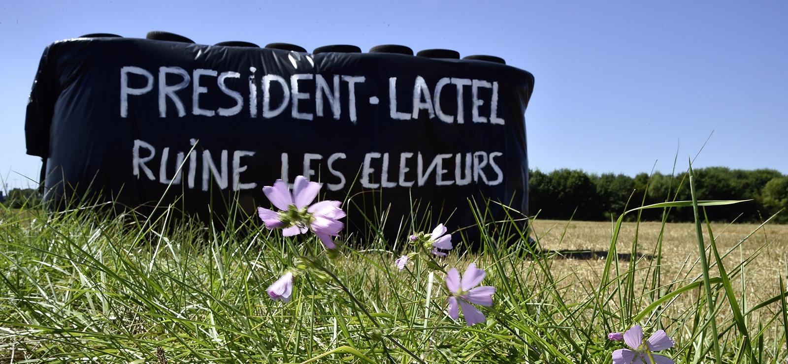 Lactalis : Haro sur le géant laitier
