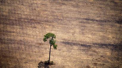 Sanctionner les crimes écologiques