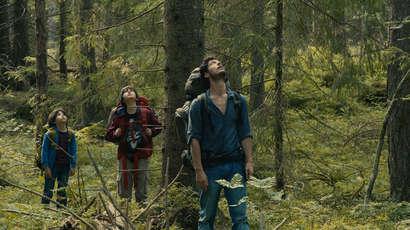 « Dans la forêt », deGilles Marchand