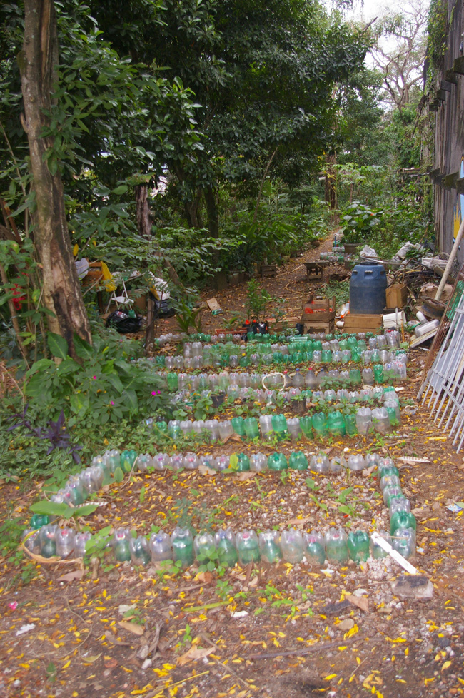 Jardin Morro de coroa - Une bataille difficile pour que les espaces jardinés ne soient pas construits ou pour que la terre ne soit pas balayée par les pluies torrentielles qui ravagent souvent les collines