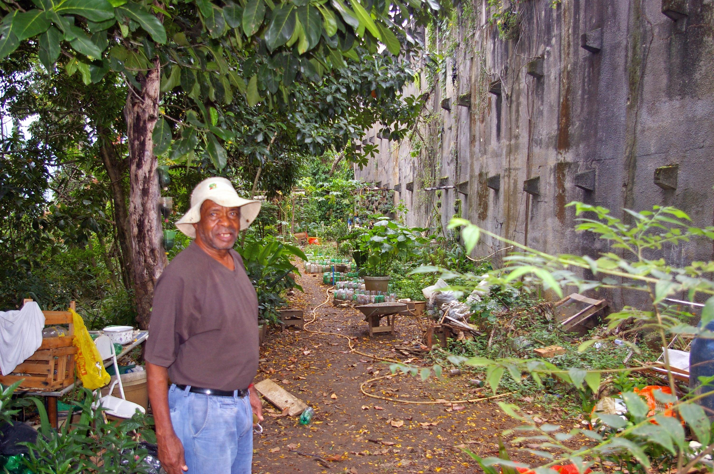 Un jardin communautaire dans la favela Santa Teresa